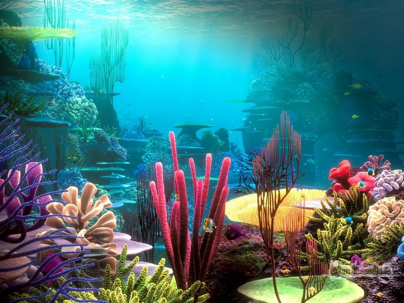 Acquario 3d