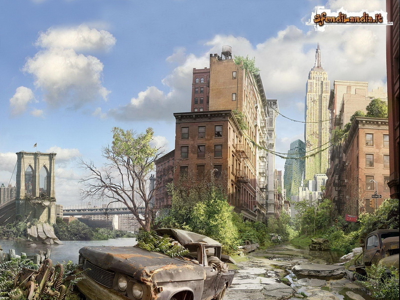 City After Disaster