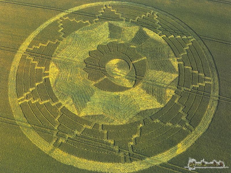 Cerchio nel grano