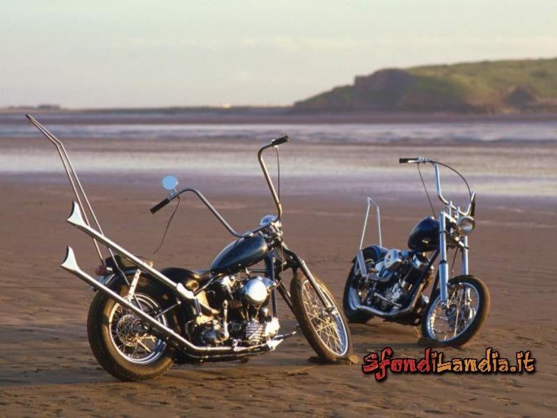Double Harley