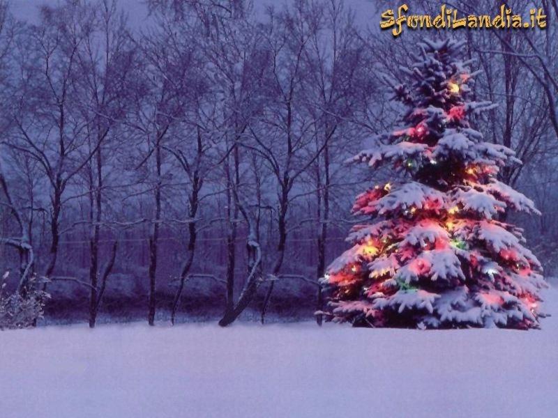 Sfondo gratis di albero natalizio per for Sfondi natale 3d