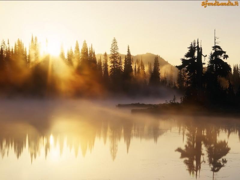 Nebbia sul loago