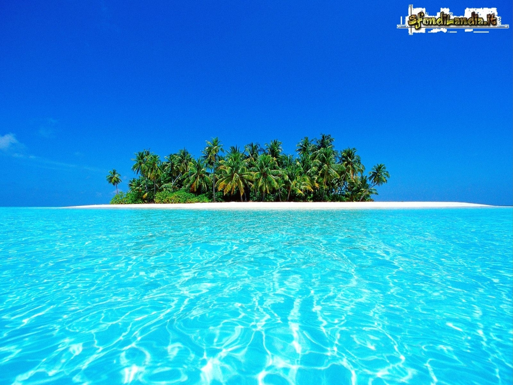 Atollo Ari