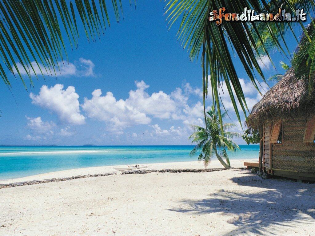 Sfondo gratis di caraibi per desktop smartphone android e for Sfondilandia primavera