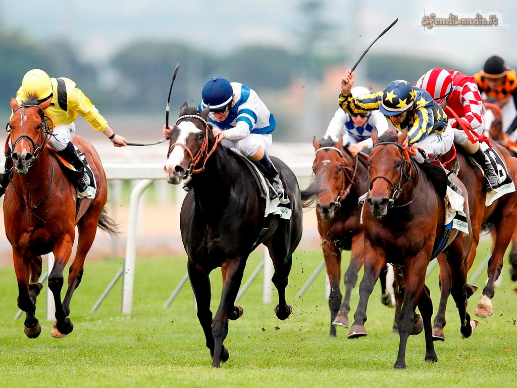 Sfondo gratis di corsa con i cavalli per for Sfondi cavalli gratis