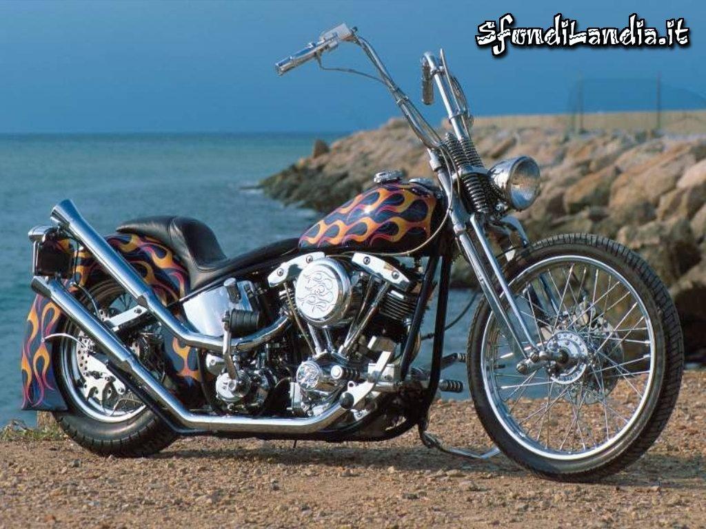 Harley On The Beach