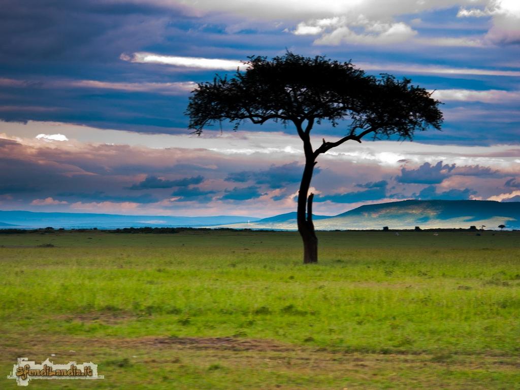 Sfondo gratis di kenya per desktop for Sfondilandia mare