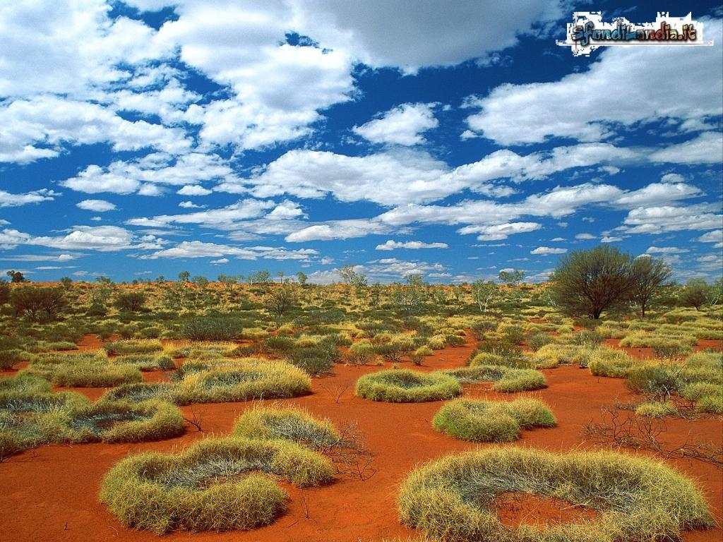 Little Sandy Desert