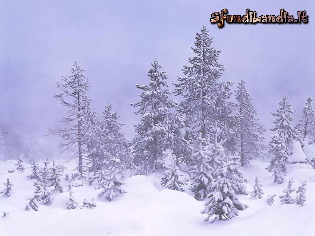 sfondo gratis di nebbia invernale per