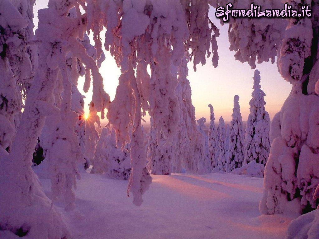Sfondo gratis di neve al tramonto per for Sfondilandia mare