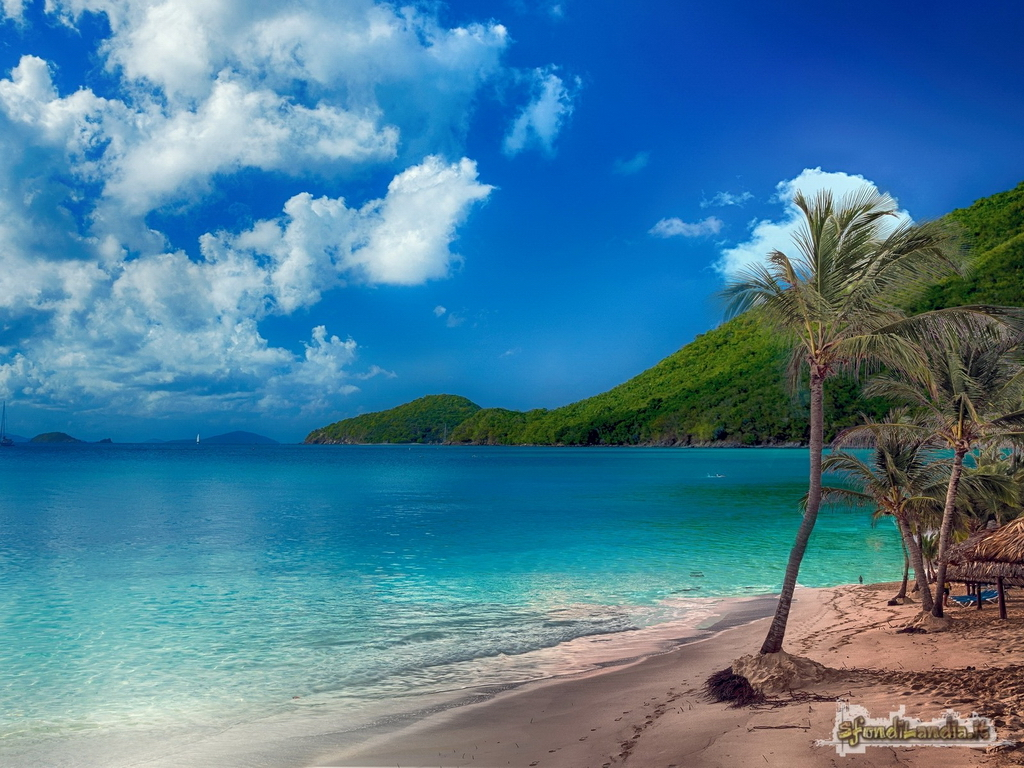 Paradise On The Sea