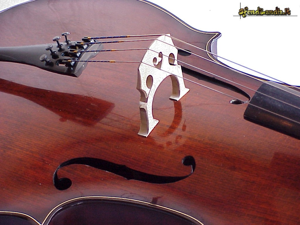 1000 images about cellos on pinterest
