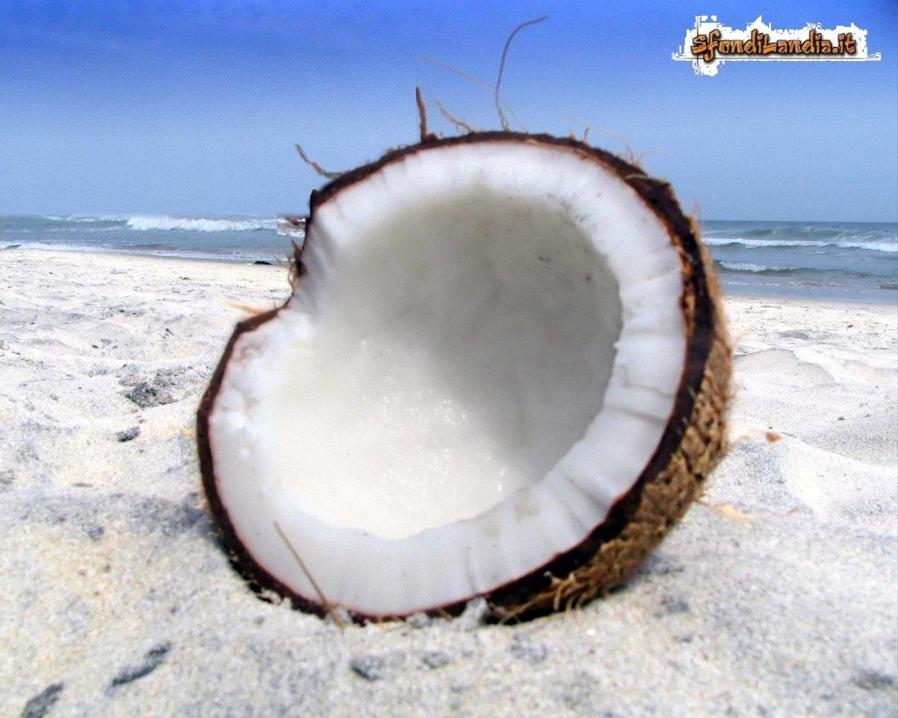 Cocco in spiaggia