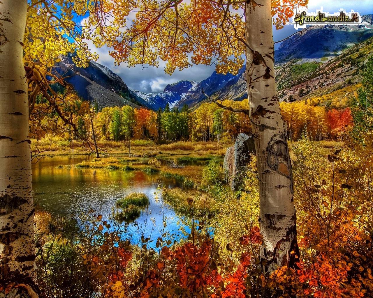 Sfondo gratis di colori autunnali per for Foto per desktop gratis autunno