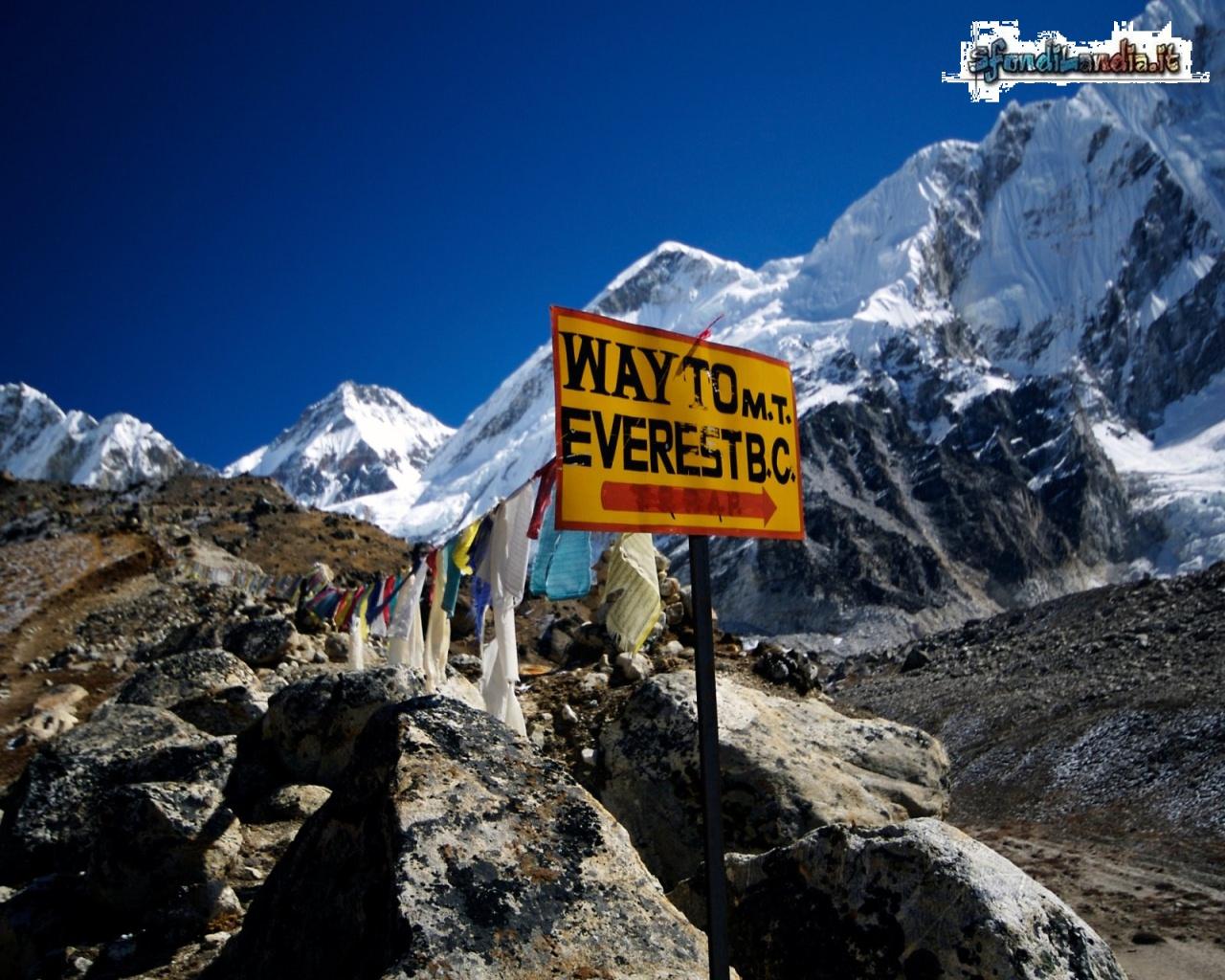Cartello Everest
