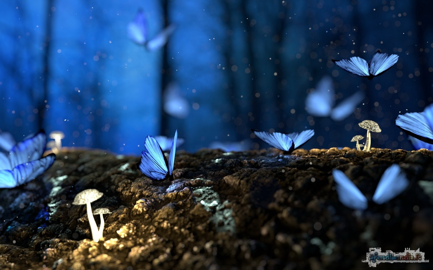Butterfly And Mushrooms