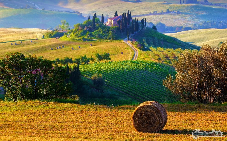 Collina Toscana
