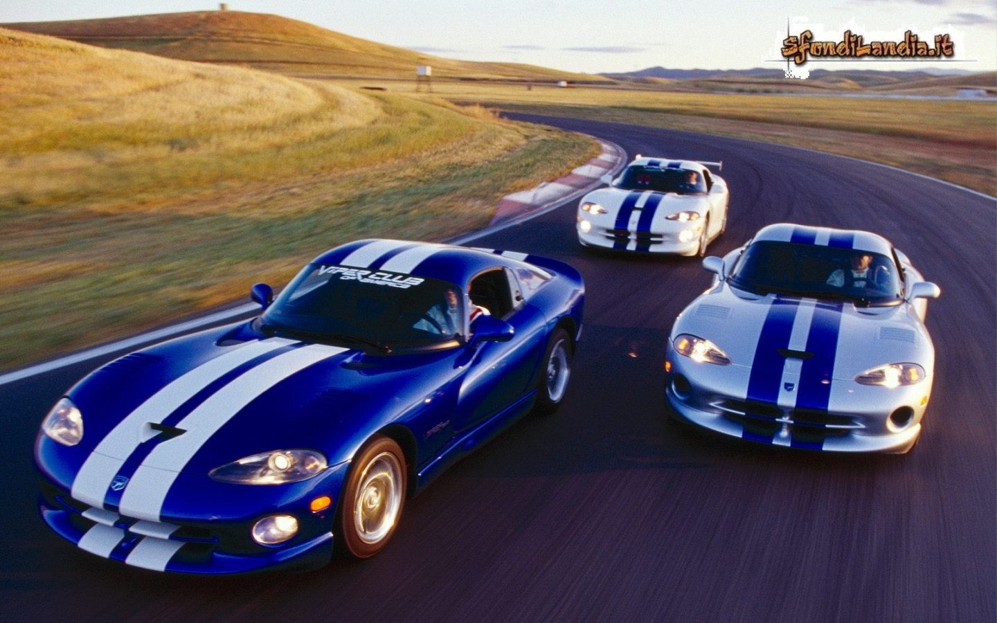 Dodge Vipers