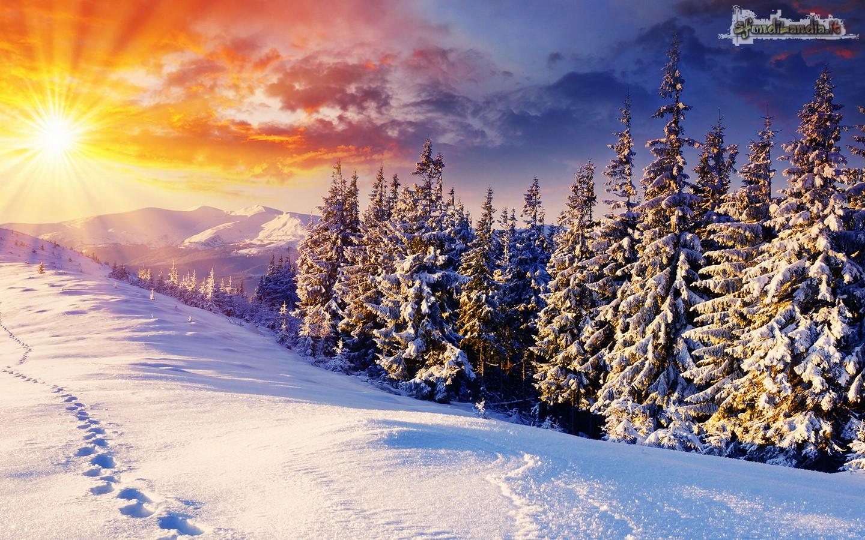 Sole sulla neve