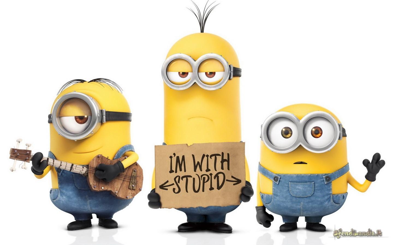 Minion With Stupid