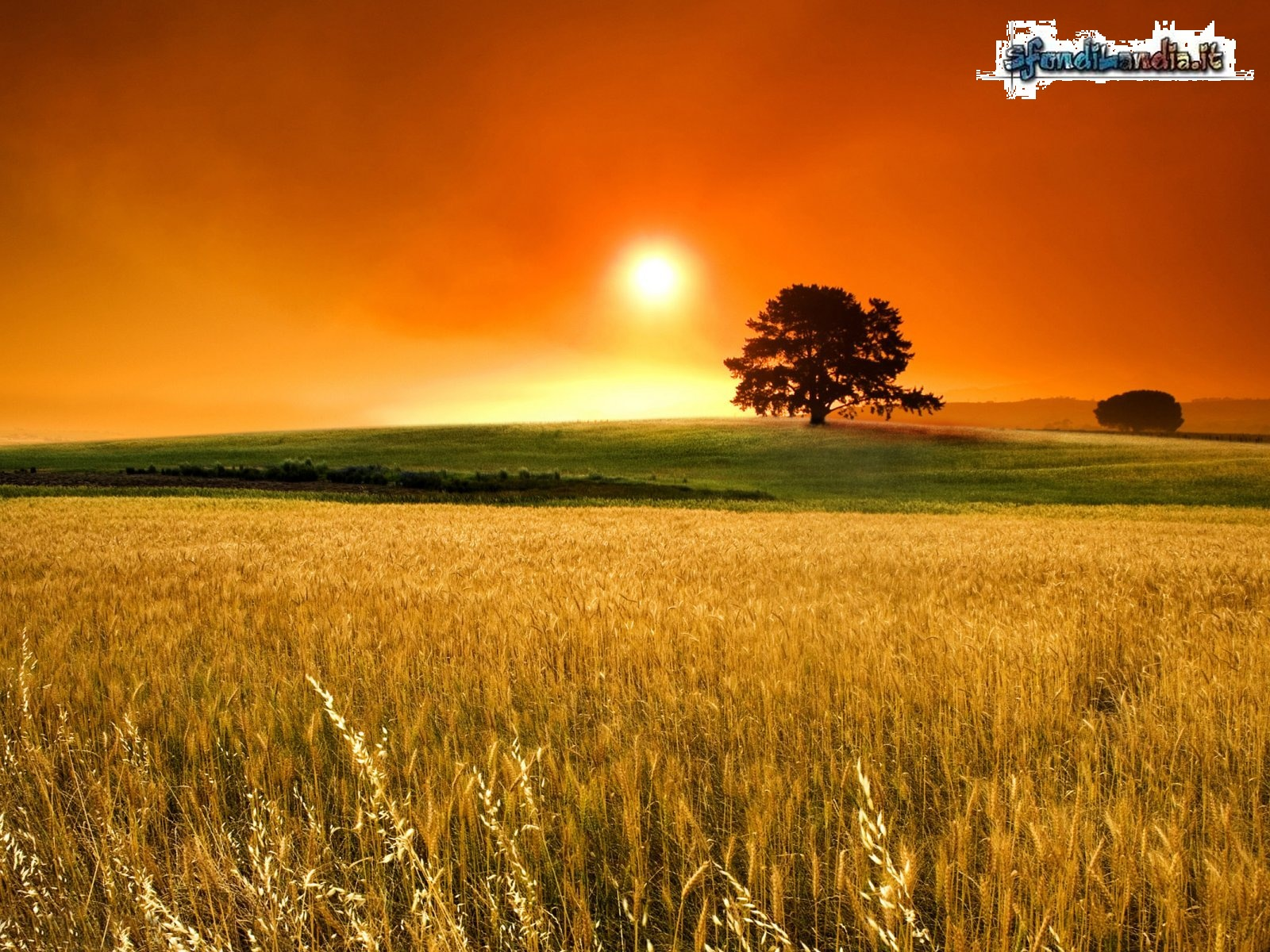 Sunset Country