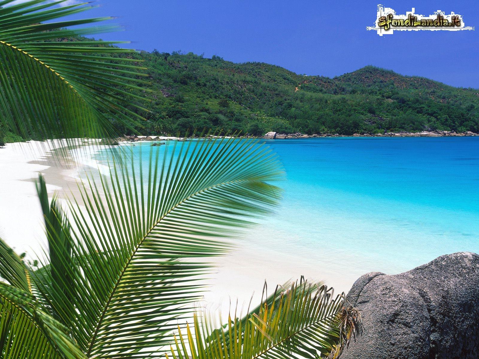 Sfondilandiait Sfondo Gratis Di Riva Tropicale Per Desktop