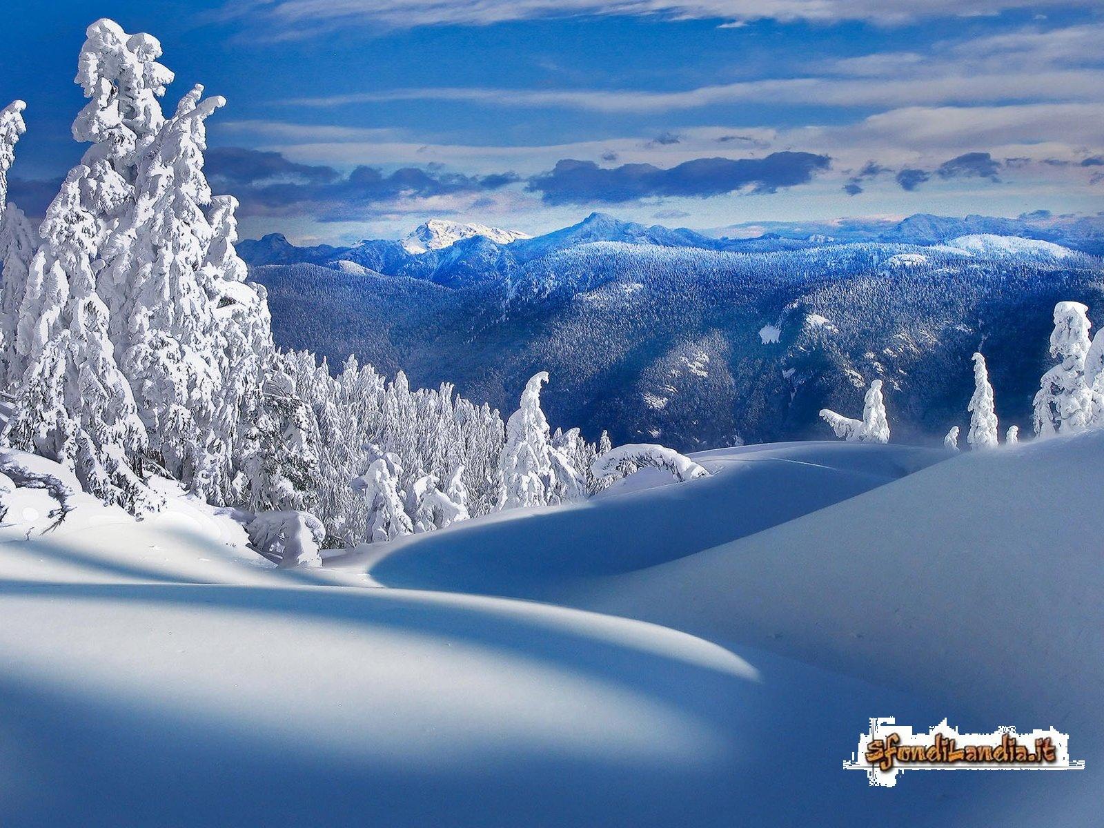sfondo gratis di paesaggio invernale per