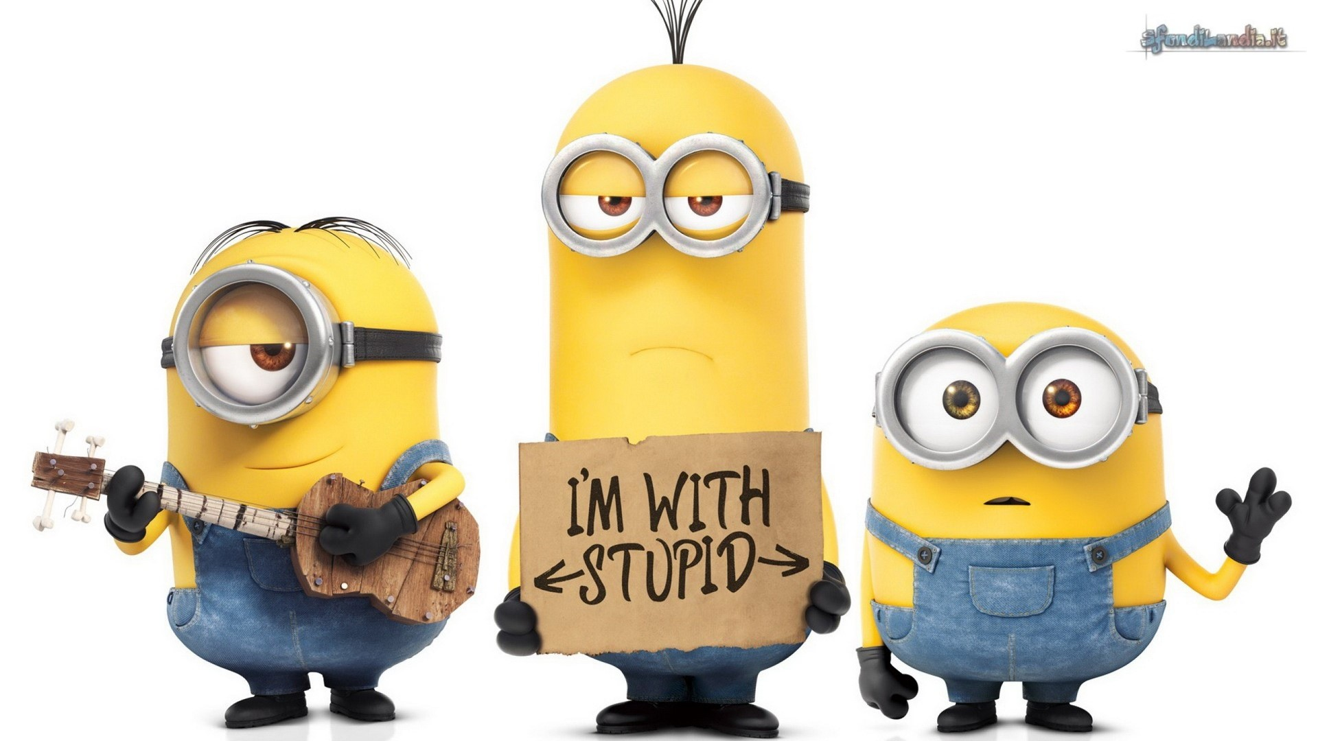 Minion With Stupid