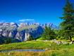 Sfondo: Alpine Summer