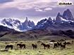 Sfondo: Ande della Patagonia