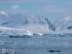 Sfondo: Artico