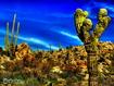Sfondo: Azalai Baja Cactus