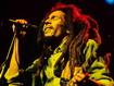 Bob In Concert