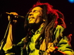 Sfondo: Bob In Concert