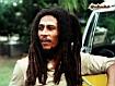 Sfondo: King Of Reggae