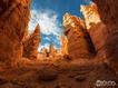 Sfondo: Bryce Canyon