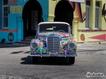 Butterfly Car