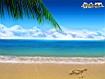 Sfondo: Cuore sulla sabbia