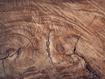 Sfondo: Cut Wood