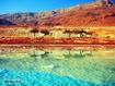 Sfondo: Dead Sea