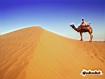 Sfondo: Beduino