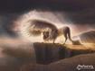 Dreamy Horse