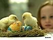 Sfondo: Easter Egg