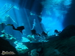Yucatan Underwater