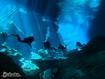 Sfondo: Yucatan Underwater