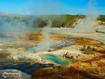 Sfondo: Norris Geyser Basin