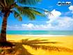 Sfondo: Gold Beach