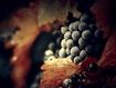 Sfondo: Grapes