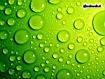 Sfondo: Green Water