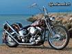 Sfondo: Harley On The Beach